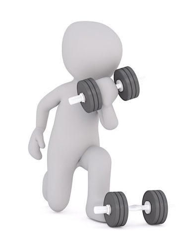 eiweisspulver test Muskeln aufbauen